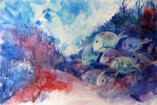 fish on terraskin