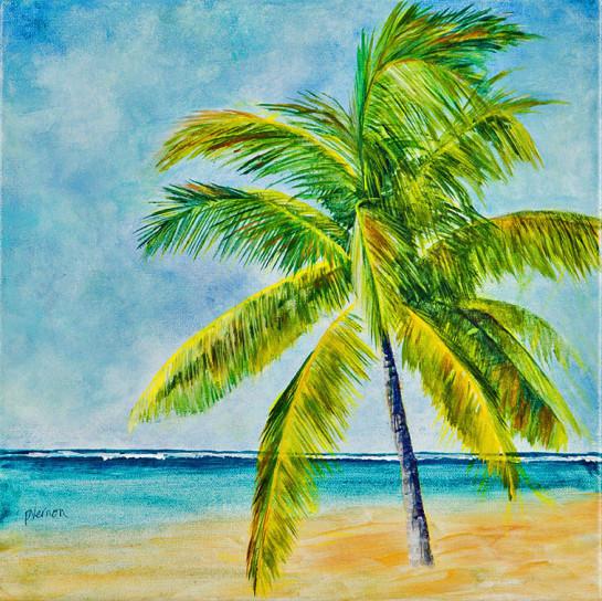 palm-paradise